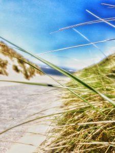 Blick Richtung Strand, Baltrum 2020