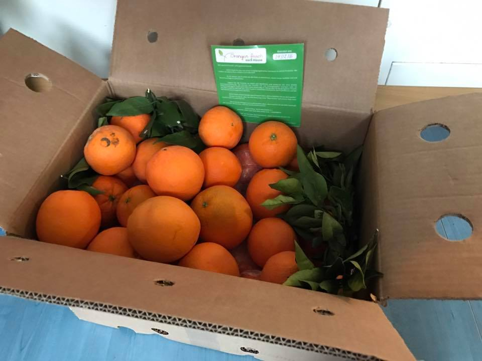 Orangen aus Spanien